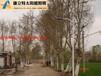 新疆昌吉太陽能路燈廠家/昌吉6米高鋰電池太陽能路燈價格