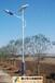 雞西太陽能路燈哪個牌子好,雞西太陽能路燈優質品牌推薦