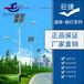 聊城特色造型太陽能路燈,聊城太陽能路燈銷售門店
