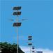 帶嶺太陽能路燈廠家帶嶺太陽能路燈價格