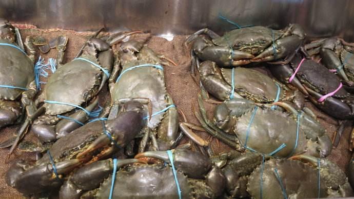 乌海海勃湾区海鲜干货市场价格查询