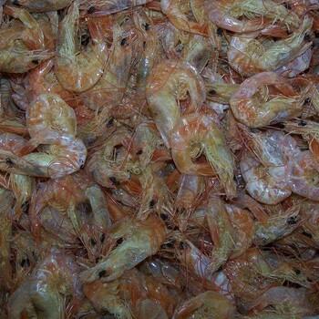 保定安新海鲜干货价格