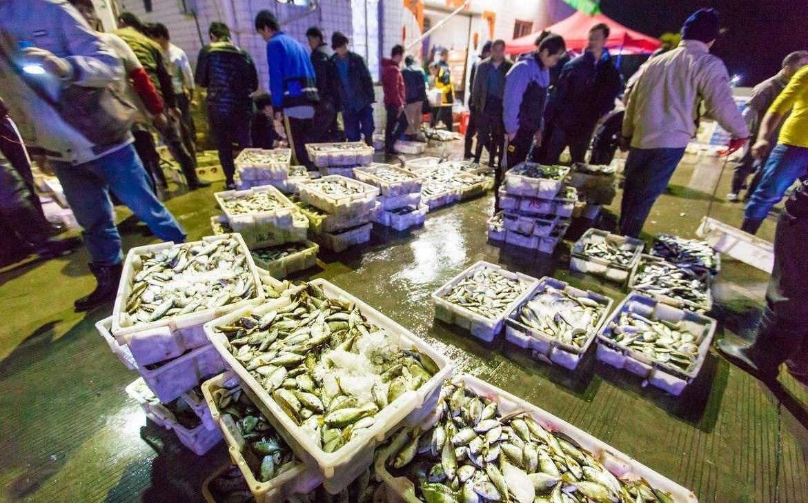哈密伊州区海鲜干货多少钱