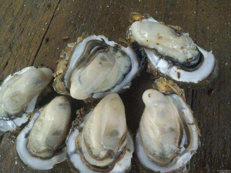 铜川海鲜干货加盟