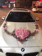 欽州靈城鎮婚慶公司圖片