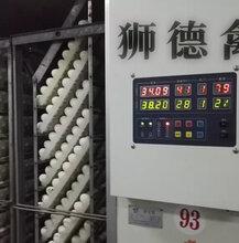 养殖)六安鸭苗-新疆乌鲁木齐鸡苗+养殖视频图片