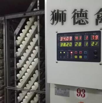 福州平潭鸭苗哪里有卖的-罗曼褐蛋鸡苗-快大黄鸡苗批发市场一只