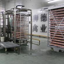 安顺黑棕鹅苗批发市场地址广州求进农业有限公司图片