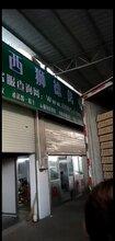 养殖)鸭苗的养殖-江西九江小鹅苗+孵化厂在哪有图片