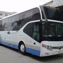 湘潭到高密豪华大巴车在哪乘图片