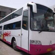织里到聊城大巴车安全可靠图片
