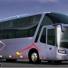 福鼎到滁州卧铺大巴车欢迎致电图片