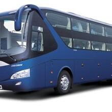 黄岛到瑞安直达大巴车时刻表图片