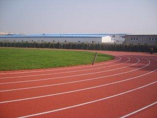 济宁塑胶地板PVC运动地板