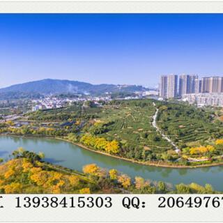 盐池县能写报告/编写可行性报告的公司图片2