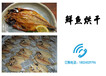 魚肉烘干機、鮮魚烘干機、魚類烘干、熱泵烘干機經營有分享