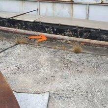 金湾红旗外墙防水补漏横琴专业补漏楼面防水堵漏公司