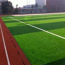 塑胶跑道篮球场人造草坪运动实木地板幼儿园跑到