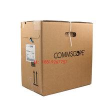 上海安普AMP六類非屏蔽網線1427071-6無氧銅千兆雙絞線圖片