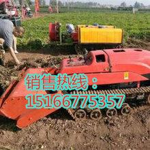 江蘇省小型旋耕機農活好幫手