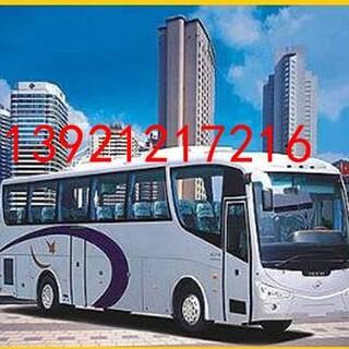 请问丹阳有到慈溪客车票快件托运吗K1392120宠物托运图片4