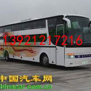 请问丹阳有到慈溪客车票快件托运吗K1392120宠物托运图片2