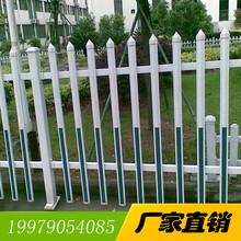 莆田pvc护栏塑钢护栏、PVC栅栏生产厂家图片