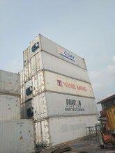 江苏提供大型冷藏集装箱规格齐全图片