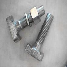 T型螺栓現貨M1245M1250熱鍍鋅T型螺栓達克羅T型螺栓圖片