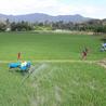 最新自走式水稻打药机生产厂家国家补贴产品合肥多加