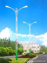 晋州路灯生产企业及报价