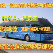 霞浦到延津长途卧铺大巴车图片