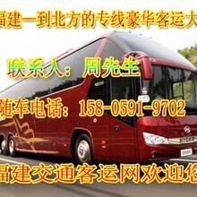 霞浦到延津直达客车欢迎致电图片