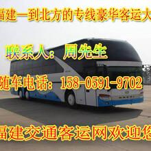 霞浦到延津豪华大巴车班次查询图片