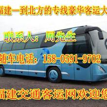 霞浦到延津豪华大巴车随车电话图片