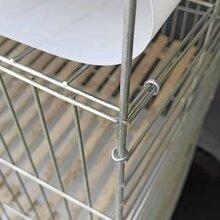 供应子母兔笼3层12位子母母兔笼铁丝网低竹板低图片