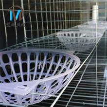 二手鴿籠四層16位加粗多籠位鴿籠透明糞板圖片
