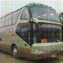 南安到新乡的豪华卧铺大巴车客车时刻表图片