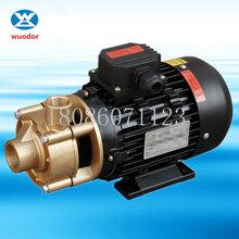 WF-10S-200加热器漩涡泵蒸汽发生器专用泵图片