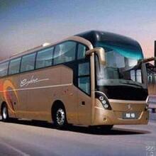 常熟到海阳直达卧铺大巴车全程高速图片