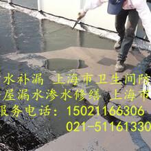 上海市松江區洞涇鎮專業防水補漏衛生間防水價格合理5116X1330圖片