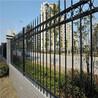 厂家供应锌钢围栏-铁艺护栏-小区围栏-庭院围栏