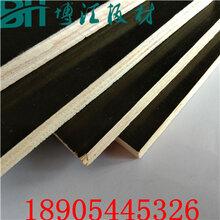 聊城建筑覆模板棚改建設專用建筑覆模板環保易脫模博匯模板圖片