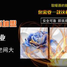 甘肅家用取暖器-投資好項目圖片