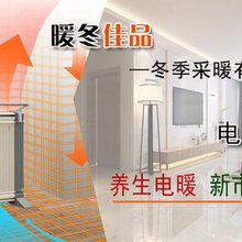 甘肃对流电暖器代理投资图片