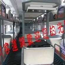 (启东到文山汽车大巴车欢迎您来电咨询)151-5142-5645图片