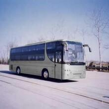 宁波直达到汕尾的直达卧铺大巴车图片