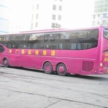 天天发车(从宁波到新县的客车欢迎致电)图片