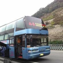 启东专线直达(从启东到文山客车几个小时到)图片