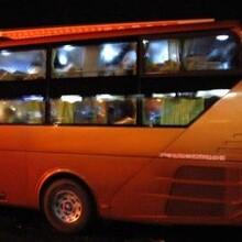 周口,泰兴直达大巴车√泰兴车站有到周口的客车/大巴车/回家班车图片